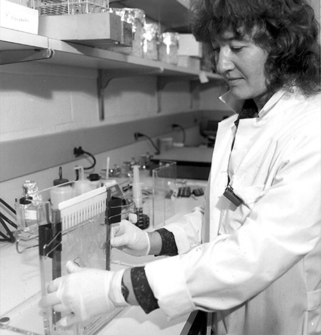 Carol Greider in the lab