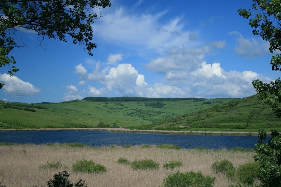 A view of Pike Lake