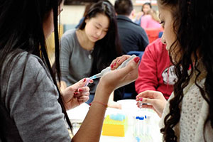 STEM matters to CSHL and NYC Schools