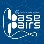 Base Pairs