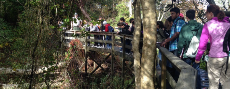 Barcode Long Island students out collecting samples for their research project.