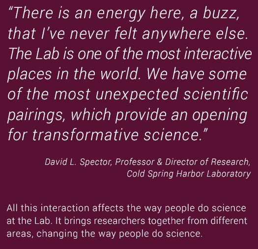 David L. Spector